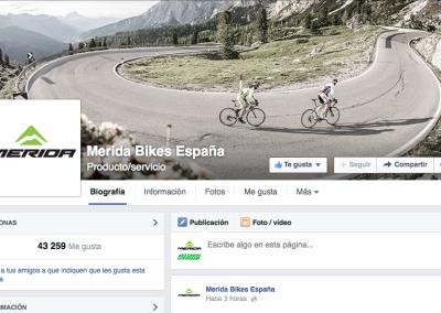 Multinacional española líder mundial en sector ciclismo